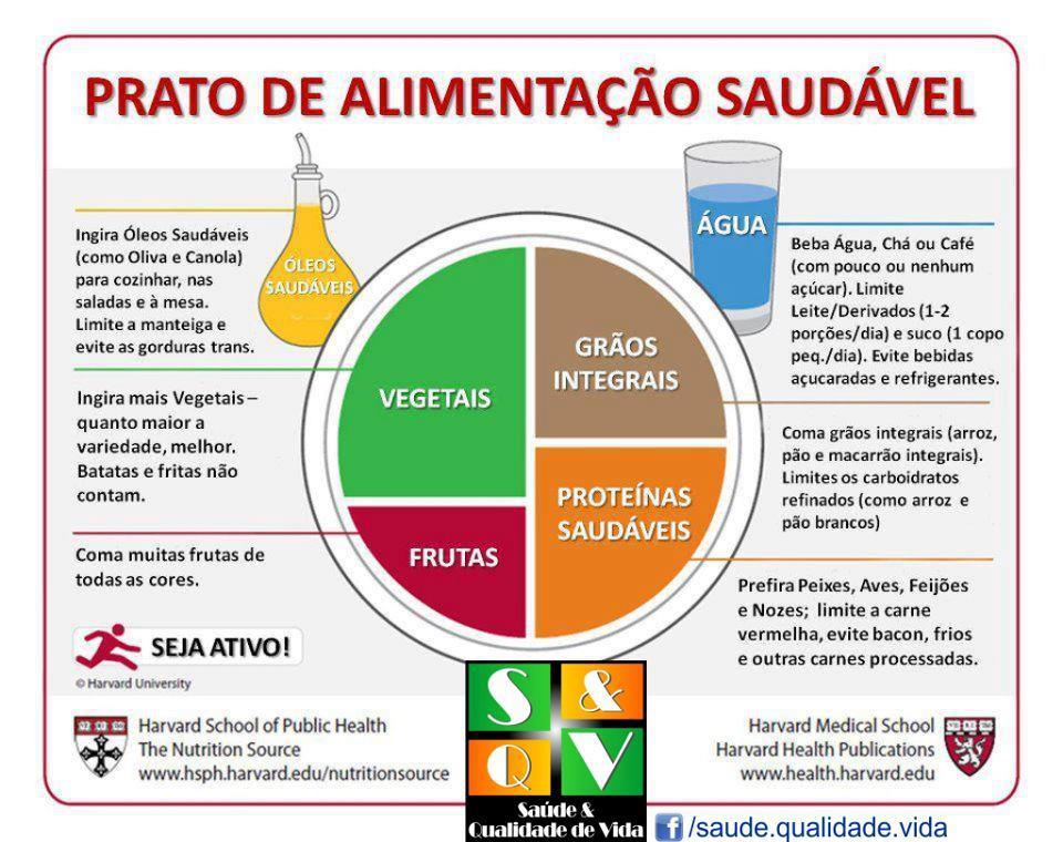 prato-de-alimentac3a7c3a3o-saudc3a1vel.jpg