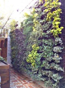 Jardins verticais trazem o verde para pequenos espaços