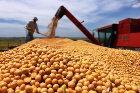 colheita-soja