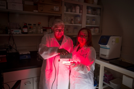 Photo of Janis T Eells and Jeri-Annette Lyons in the lab in Enderis