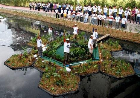 sistema-ecologico-recupera-rio-poluido4