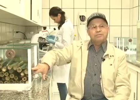Pesquisador de SC inventa método com bambu para tornar água potável