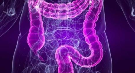 Veja o que acontece com o seu sistema gastrointestinal quando você medita