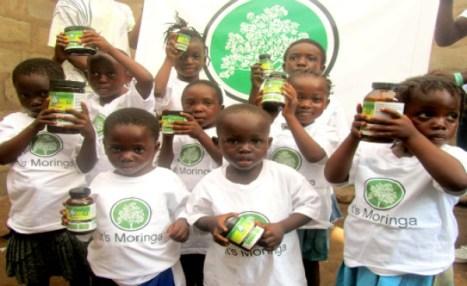 Moringa, a planta que purifica a água e poderia acabar com a fome mundial 3