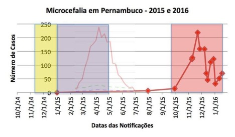 grafico 1.piramidal.net