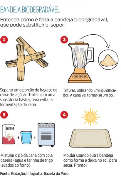"""Brasileira de 17 anos cria """"isopor"""" biodegradável a partir da cana-de-açúcar 2"""