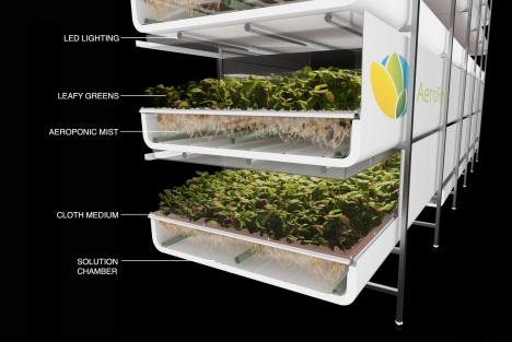 Maior fazenda vertical do mundo usará 95% menos água com método mais produtivo 2