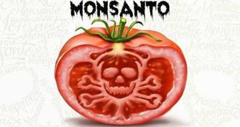 Os 12 produtos mais perigosos criados pela Monsanto 1