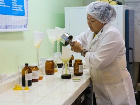 Remédio homeopático pode auxiliar no combate ao câncer de próstata