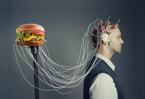 cerebro-cords